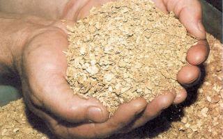 Особенности шлихового золота и технологии его извлечения