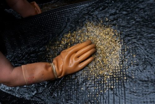 как добывают золото